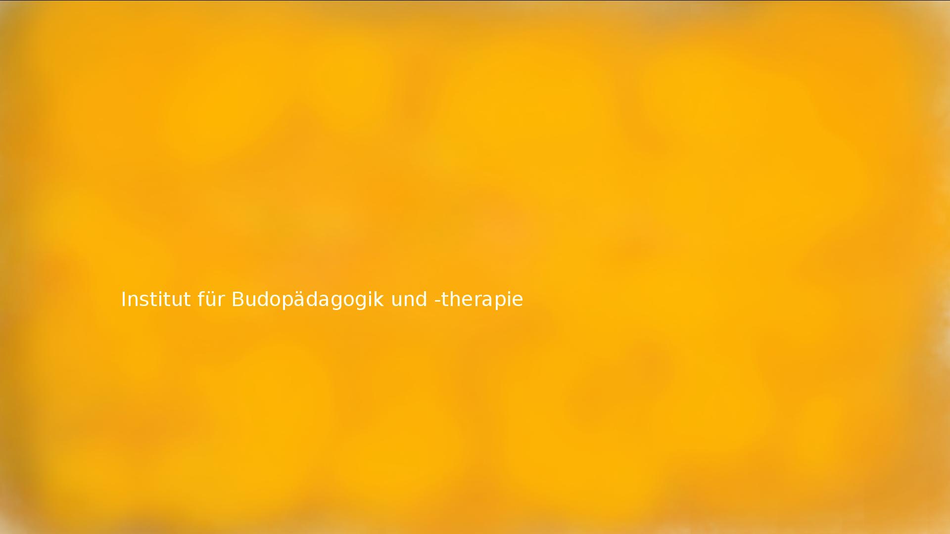 Institut für Budopädagogik und -therapie